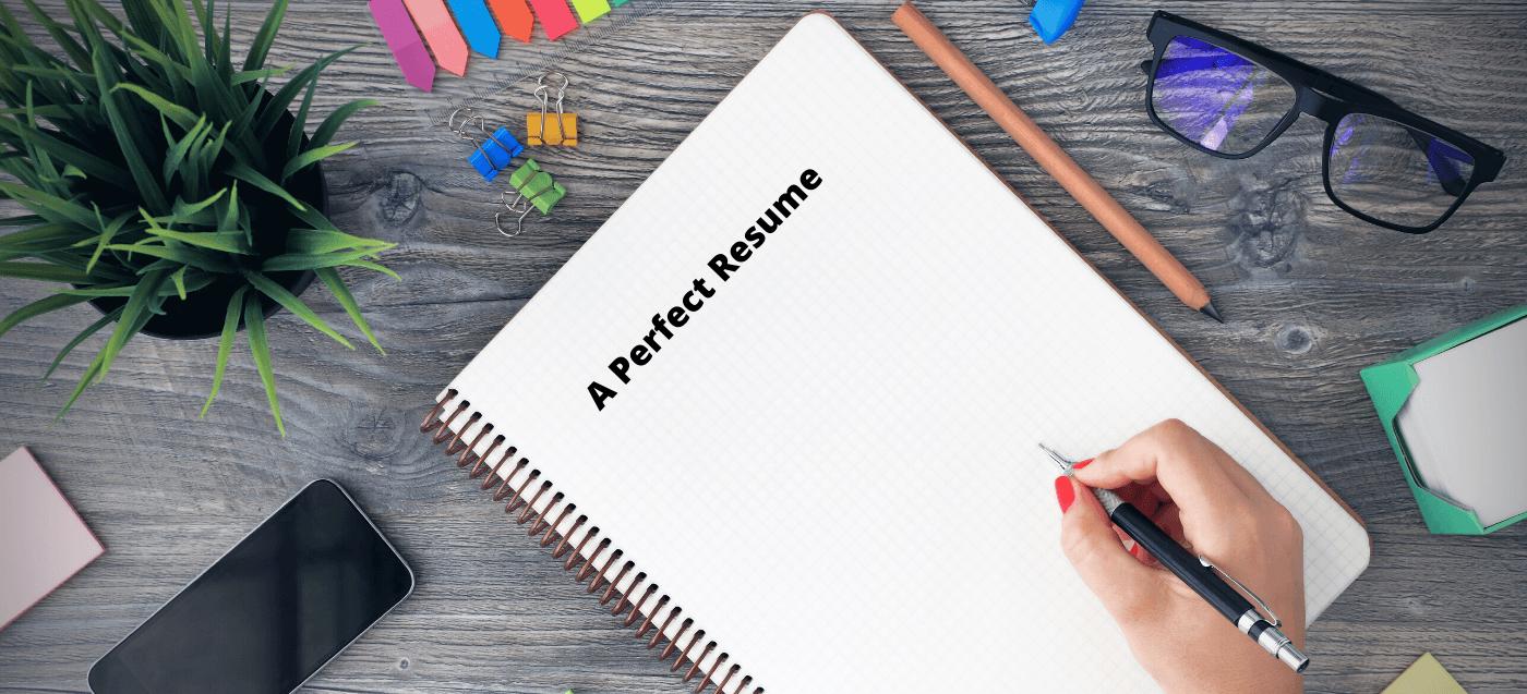 write a perfect resume